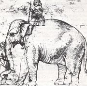 Male ♂ Asian elephant (<em>Elephas maximus</em>) Hanno (Annone) at Pope Leo X (Giovanni di Lorenzo de Medici)