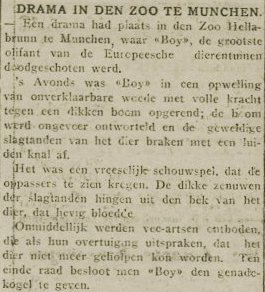 "Article from ""De Volksstem"" issued 11 February 1938."