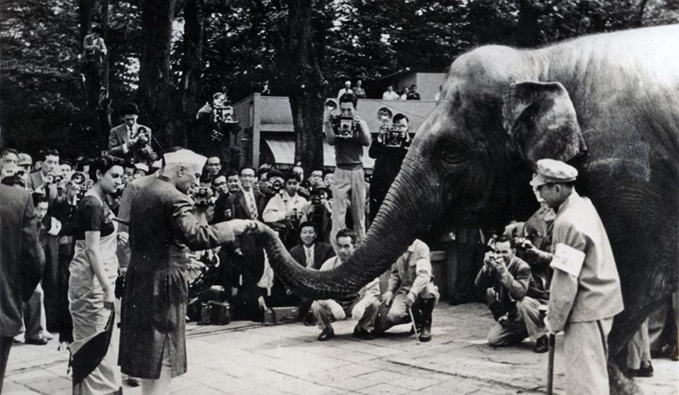 Nehru and Indira with an elephant named after her, which was given to Ueno zoo in Japan 1949.