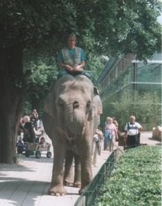 Dresden Zoo 1999